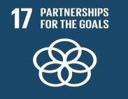 #17 development goal